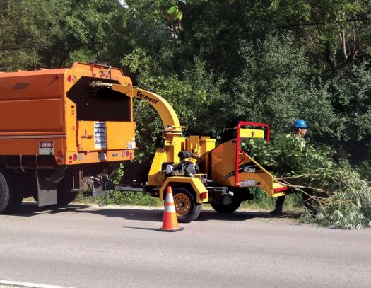 Commercial Tree Services-Plant City FL Tree Trimming and Stump Grinding Services-We Offer Tree Trimming Services, Tree Removal, Tree Pruning, Tree Cutting, Residential and Commercial Tree Trimming Services, Storm Damage, Emergency Tree Removal, Land Clearing, Tree Companies, Tree Care Service, Stump Grinding, and we're the Best Tree Trimming Company Near You Guaranteed!