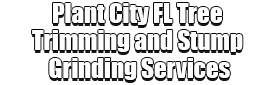 Plant City FL Tree Trimming and Stump Grinding Services Logo-We Offer Tree Trimming Services, Tree Removal, Tree Pruning, Tree Cutting, Residential and Commercial Tree Trimming Services, Storm Damage, Emergency Tree Removal, Land Clearing, Tree Companies, Tree Care Service, Stump Grinding, and we're the Best Tree Trimming Company Near You Guaranteed!