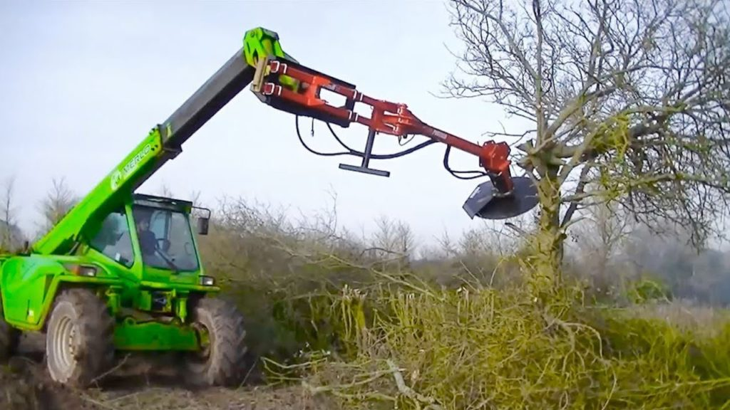 Tree Trimming Services-Plant City FL Tree Trimming and Stump Grinding Services-We Offer Tree Trimming Services, Tree Removal, Tree Pruning, Tree Cutting, Residential and Commercial Tree Trimming Services, Storm Damage, Emergency Tree Removal, Land Clearing, Tree Companies, Tree Care Service, Stump Grinding, and we're the Best Tree Trimming Company Near You Guaranteed!